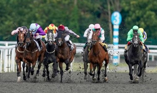 Horse racing tips TODAY: The best bets at Bath, Ripon, Ayr and Southwell