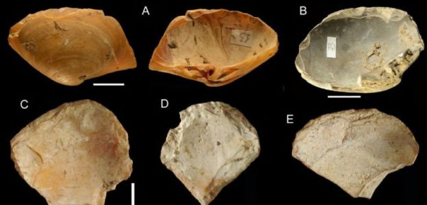 Did Neanderthals in Italy go diving for clamshells?