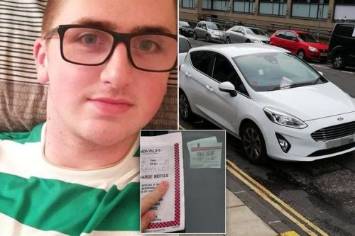 Driver mocked after disputing ticket because he was parked NEXT to double yellow lines rather than on them
