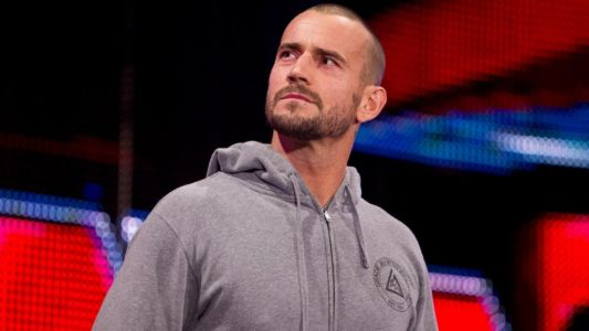 Will CM Punk ever return to WWE? Triple H, Stephanie McMahon and more weigh in