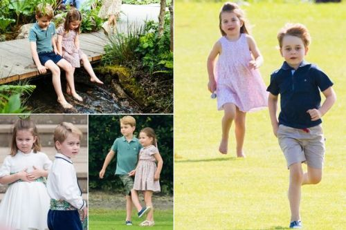 Prince George and Princess Charlotte 'learn to lean on each other' as playdates are 'tricky'