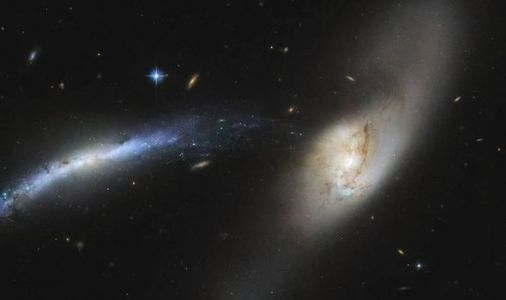 NASA's Hubble spots intergalactic tug of war deep in the Universe