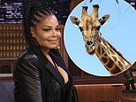 Janet Jackson used to own a giraffe. and admits her son Eissa has the family's music gene