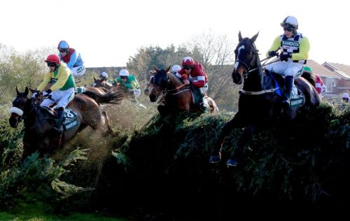 Virtual Grand National 2020: Betting tips for the world's greatest virtual race