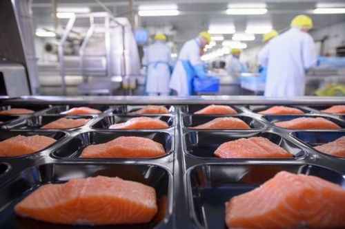 Food safety warning after 20 tonnes of salmon disappears during lorry smash on A82