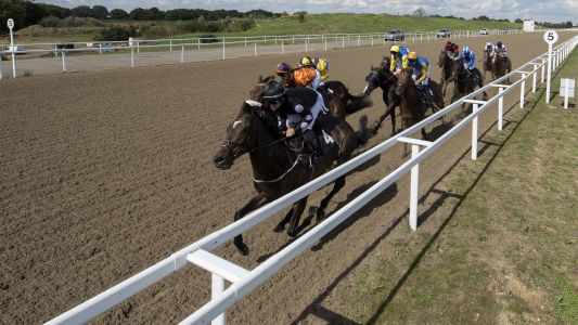 Horse Racing Tips: Timeform's three best bets at Chelmsford on Saturday