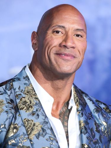 The Rock Rips Off Gates To Mansion With His Bare Hands And We're Equal Parts Impressed And Terrified