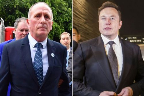 Elon Musk could face defamation retrial as Brit diver's lawyer claims jury blundered