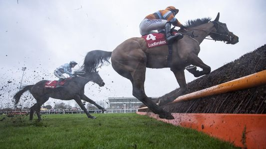 Daily Racing Tips: Timeform's three best bets at Newcastle on Saturday
