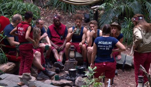 When is the next I'm A Celebrity elimination and did anyone leave last night?