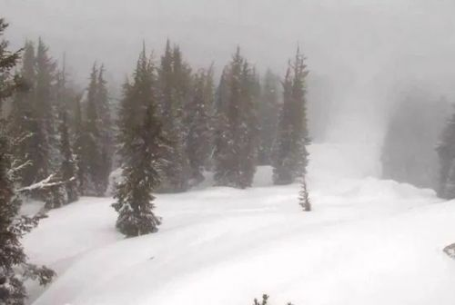 At least one dead, one injured after avalanche slams into Lake Tahoe ski resort