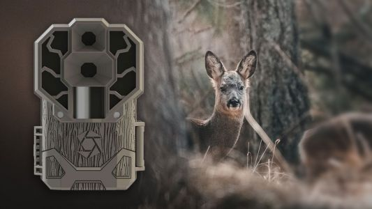 Best trail cameras in 2021: Top camera traps for wildlife and nature photography