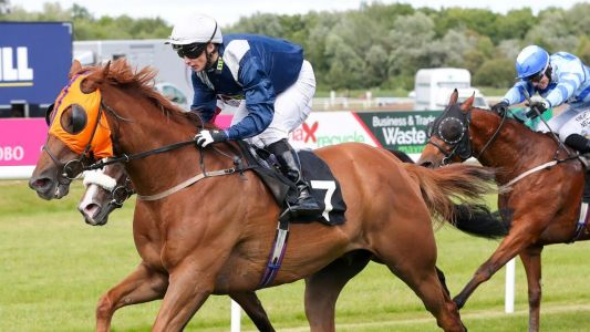 Today's Horse Racing Tips: Outsider can go well at a big price at Thirsk