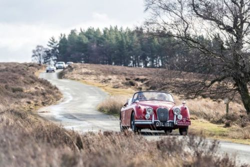 A taste of the Highland Thistle Rally