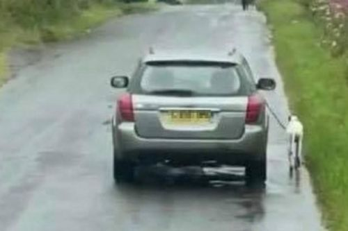 Sickening footage shows dog forced to run alongside owners car on Fife road