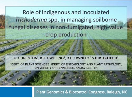 Role of indigenous and inoculated Trichoderma spp. in managing soilborne fungal diseases