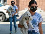 Lucy Hale is casually stylish in tie dye t-shirt and jeans on trip to mall with beloved pup Elvis