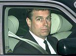 Former Royal protection officer raises questions about Prince Andrew's 'alibi'