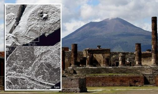 Archaeology: 'Extraordinary' discovery of 2,000-year brain cells in Mount Vesuvius victim