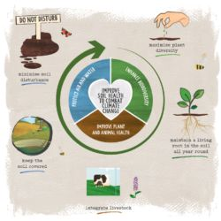 Restore our earth and think about soil this Earth Day