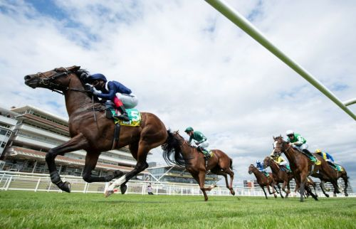 Today's free horse racing tips: Best bets for Saturday's ITV racing at Newbury and Newmarket