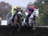 Robin Goodfellow's racing tips: Best bets for Friday, November 22