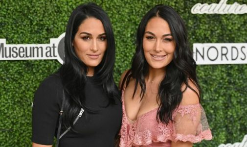 The Bella Twins: WWE stars Nikki and Brie Bella give birth just one day apart