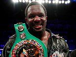 Warrior Dillian Whyte passes drugs test after Oscar Rivas victory