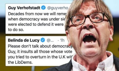 Guy Verhofstadt sparks backlash after democracy jibe - 'You tried to overturn Brexit!'