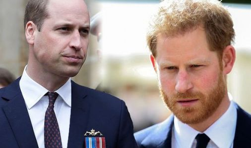 Prince William devastated: 'Fears' for monarchy as Prince Harry's behaviour 'harmful'