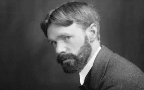 Why I wish they had sexed up DH Lawrence