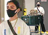 Lucy Hale keeps it Sunday casual as she shops for groceries in sweatshirt and baggy pants in LA