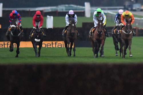 Haydock races: tips, racecards and preview for Saturday's Peter Marsh Chase meeting