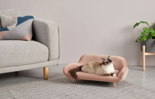 12 Stylish Pet Accessories That Won't Make Your Front Room Look Terrible