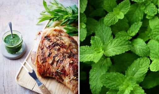 How to make mint sauce - recipe