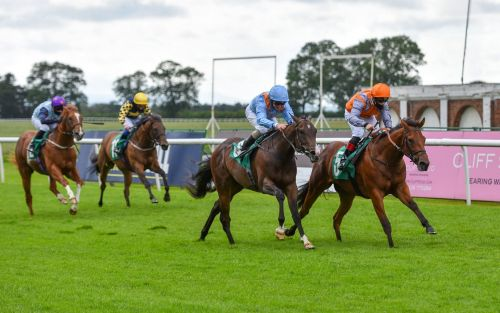 Marlborough racing tips and best bets for Sunday, August 9
