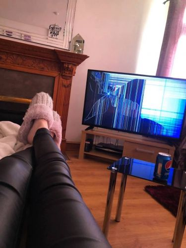 Girl tricks furious boyfriend into believing cat destroyed their TV with YouTube app - and says he's moving out