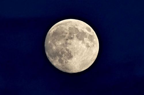 Full Beaver Moon will appear this morning - best time to see it from the UK