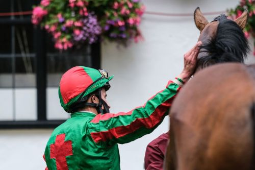 Newspaper tips: Sun Racing's Each-Way Thief and today's horse racing NAPs