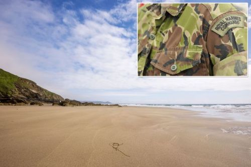 Royal Marine critical after being pulled from water during beach assault training