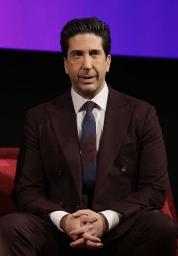 David Schwimmer Reveals How Friends Reunion Is Making It Work Despite Covid Restrictions