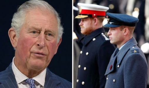 Royal hint: How Prince Charles praised William but not Harry in powerful speech