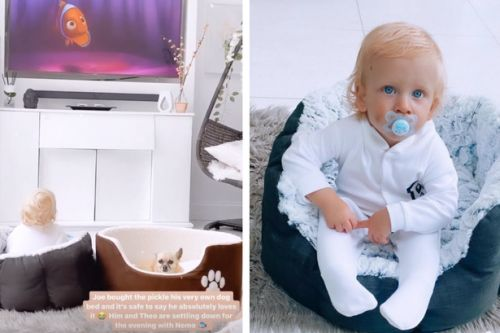 Stacey Solomon gives her son Rex his own dog bed to nap in and it's so adorable