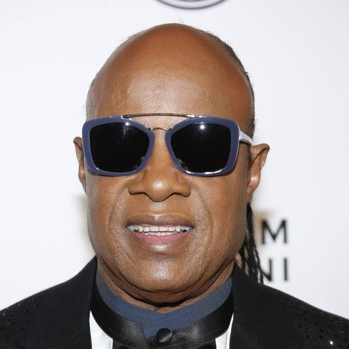Stevie Wonder calls on Joe Biden to investigate inequality in America