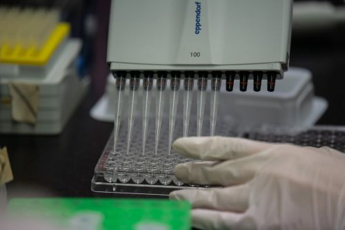 A new type of coronavirus test could turn the tide by revealing who has already recovered. Those immune people could go back to work first
