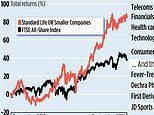 STANDARD LIFE UK SMALLER COMPANIES: Merger's just the tonic for a trust with big ideas