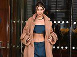 Bella Hadid stuns in navy crop top at Louis Vuitton's Paris Fashion Week Men's show