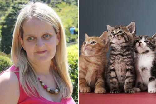 Animal lover who has fostered 300 cats urges others to follow in her footsteps