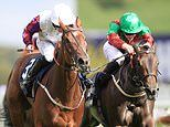 Francesca Cumani's guide to Royal Ascot:Laurens the value pick to get punters off to a flying start