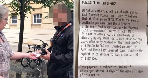 Mum fined £150 for feeding sausage roll to pigeon